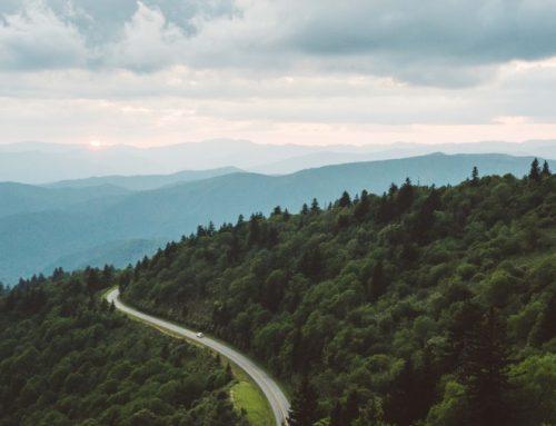 Nachhaltig reisen mit dem Wohnmobil: Das ist zu beachten