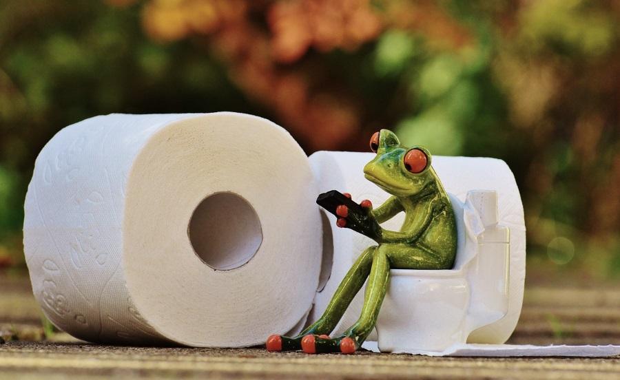 keramik-frosch-sitzt-auf-toilettenpapier