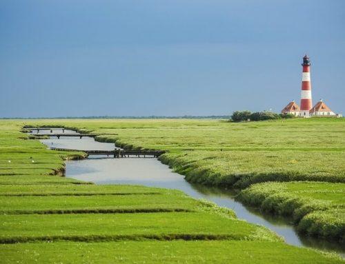 Wohnmobil Tour an der Nordsee: Das sollten Sie wissen