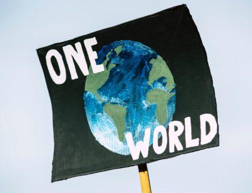 Klimaschutz im Alltag: Wie Du ganz einfach CO2 einsparen kannst